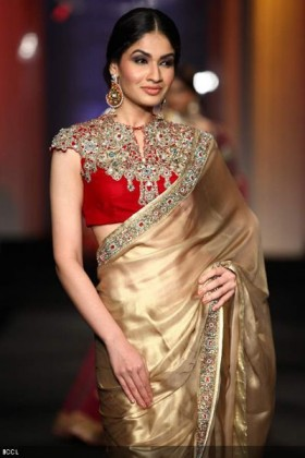 High Neck Blouse Designs for your sari this year