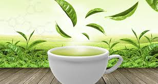 health and beauty benefits of green tea