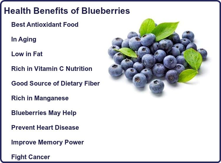 Health Benefits of Blueberry - YouTube   Blueberry Medicinal Uses