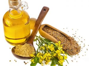 10 miraculous oils for dry damaged hair