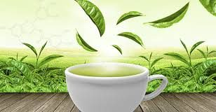 health and beauty benefits of green tea